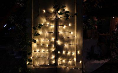 5 ideeën voor een eigen kerstboom beleving